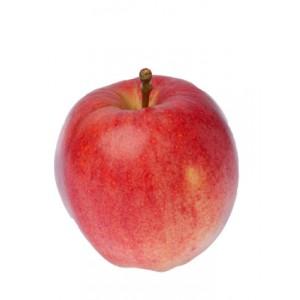 Pomme Gala colis de 2Kg